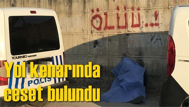 Adana'da Fahrettin Aydın'ın Cesedi Yol Kenarında Bulundu