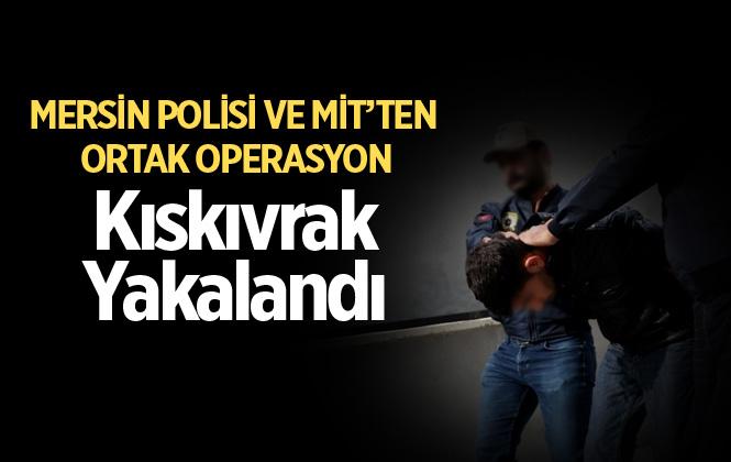 DEAŞ'ın İstihbaratçısı Mersin'de Yakalandı