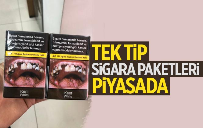 Tek Tip Sigara Paketleri Piyasada
