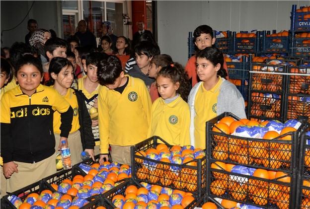Çocuklar Yerli Üretim Sebze ve Meyveleri Bir Arada Gördü