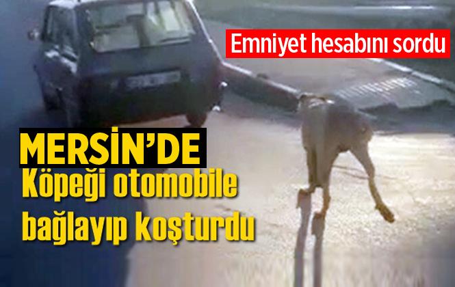 Tarsus'ta Bir Kişi Köpeği Otomobile Bağlayıp Koşturdu