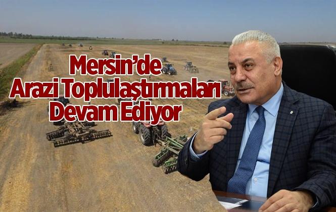 Mersin'de Arazi Toplulaştırmaları Devam Ediyor