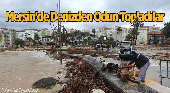 Mersin'de Vatandaşlar Selin Getirdiği Odunları Topladılar