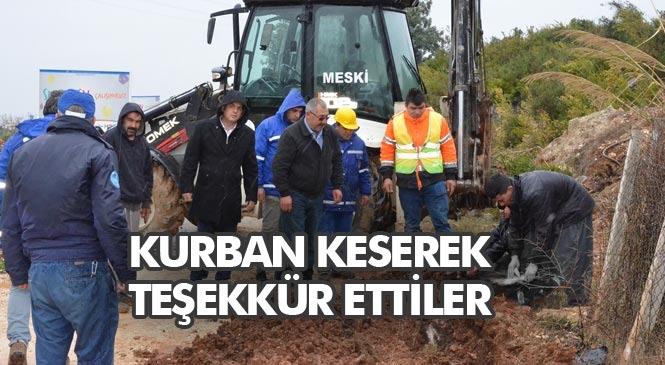 Su Sorunu Çözülen Tarsus Akçakocalı Mahallesinin Muhtarı, Kurban Keserek Teşekkür