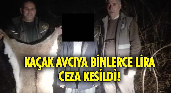 Mersin Mezitli Fındıkpınarı'nda Yaban Keçisini Avlayan Kaçak Avcıya 25 Bin 327 Lira Ceza Kesildi