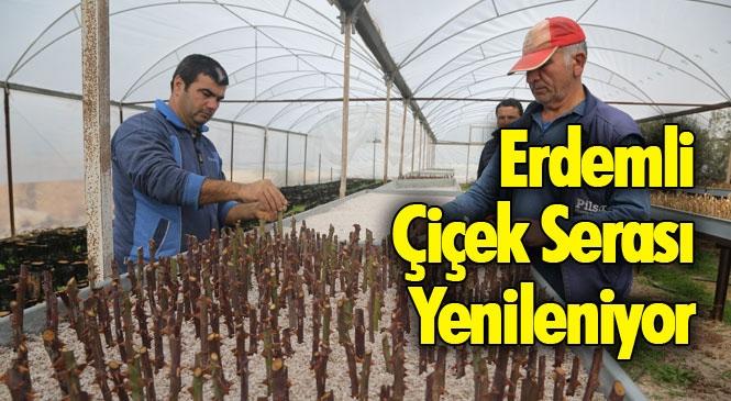 Mersin Erdemli'de İlçe Belediyesi Kendi Bünyesinde Bulunan Bitki Üretim Serasında Tadilat ve Yenileme Çalışmaları Başlattı