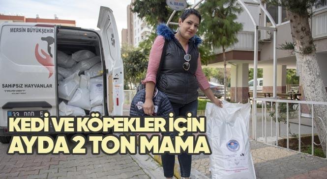 Mersin'de Gönüllülere Kedi ve Köpekler İçin Ayda 2 Ton Mama Dağıtılıyor