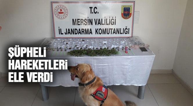 Mersin Tarsus'ta Jandarmadan Uyuşturucu Operasyonu: Yenice Mahallesinde Çalışmada 5 Kişi Gözaltına Alındı