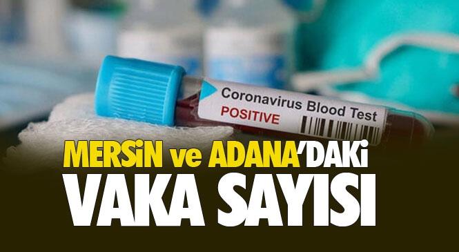 Mersin ve Adana'da  Koronavirüse Yakalanan Hasta Sayısı Açıklandı
