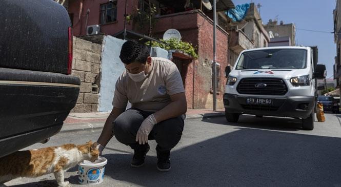 Mersin Büyükşehir, Yasak Süresince Hem Evlerindeki Vatandaşlar, Hem de Sokaklardaki Hayvanlar İçin Çalıştı