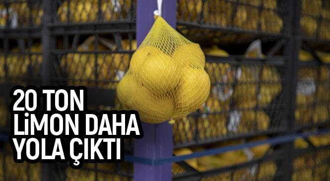İstanbul Büyükşehir'in Mersin'deki Üreticilerden Aldığı 100 Ton Limonun İkinci Partisi de Yola Çıktı! Ankara Büyükşehir de Mersin'den 50 Ton Limon Satın Alacak