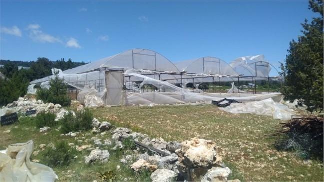 Mersin Erdemli'de Poyraz Fırtınası Tarım Arazileri ve Seralara Zarar Verdi