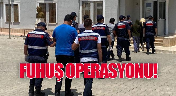 Mersin Aydıncık'ta Jandarmadan Fuhuş Operasyonu 10 Kişiden 9'u Yakalandı 1'inin Yakalanması İçin Çalışma Devam Ediyor