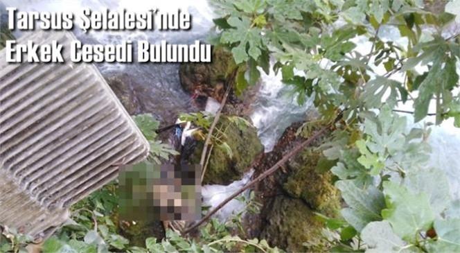 Mersin Tarsus'ta Berdan Nehrine Akan Tarsus Şelalesinde Kısmen Çürümüş Erkek Cesedi Bulundu