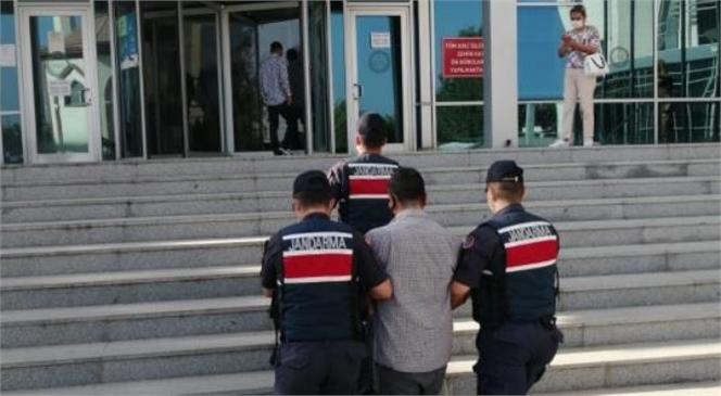 Mersin Tarsus'ta Jandarma 11 Hırsızlık Olayını Aydınlattı: Hırsız Tutuklandı