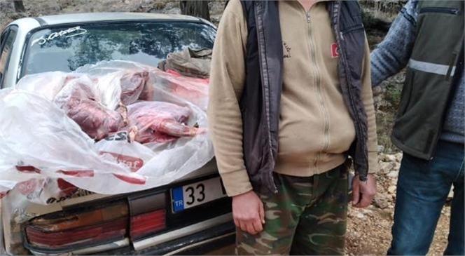 Mersin Erdemli'de Yasadışı Av Yapan ve Yaban Keçisini Vuran Avcılar Yakalandı; 31 Bin 236 Lira Para Cezası Kesildi