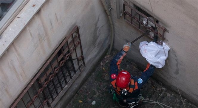 Büyükşehir'in İtfaiye Ekipleri Apartman Boşluğuna Düşen Kedi İçin Seferber Oldu