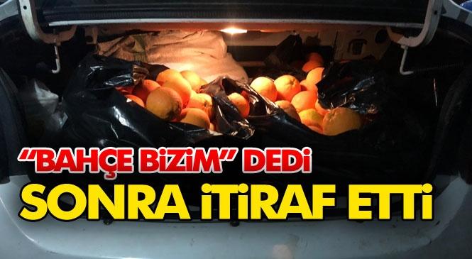 Mersin'de Jandarmanın Durdurduğu Araçtaki Kişi Önce Portakal ve Narlar Bize Ait Bahçeden Dedi Sonra Hırsızlığı İtiraf Etti