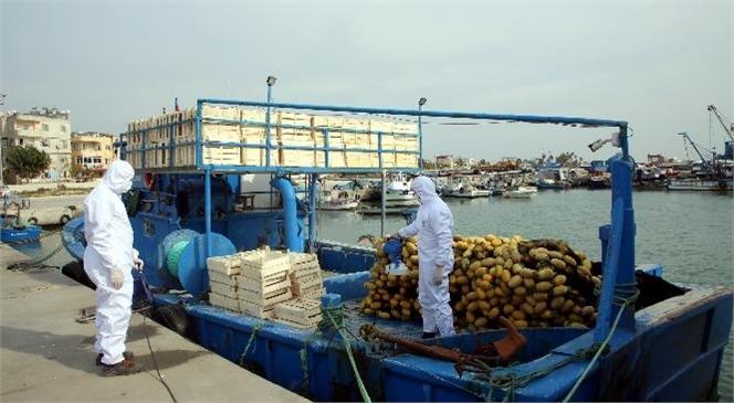 Karaduvar Limanı'ndaki Balıkçı Tekneleri Dezenfekte Edildi! Akdeniz Belediyesi, Koronavirüs Salgını İle Mücadeleye Kesintisiz Devam Ediyor