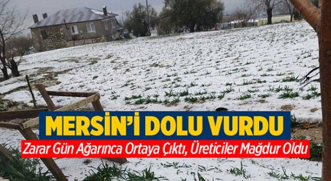 Mersin'de Etkili Olan Dolu Yağışı Felakete Dönüştü, Zarar Çok Büyük...