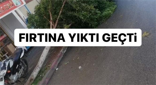 Mersin Anamur'da Etkili Olan Fırtına Maddi Zarara Yol Açtı