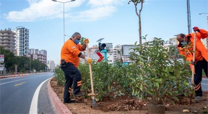 Mersin'de Hizmete Giren Katlı Kavşağın Peyzaj Düzenlemesi Sürüyor