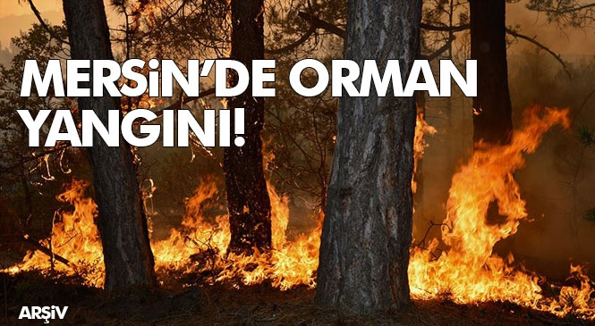 Mersin'in Anamur ve Gülnar İlçelerinde Çıkan Orman Yangınında 5 Hektarlık Alan Zarar Gördü