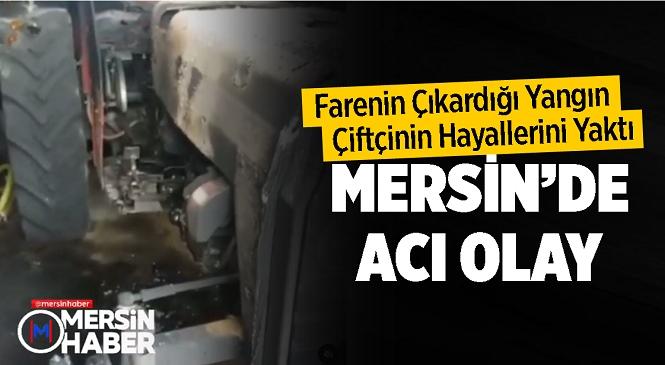 Mersin'de Farenin Çıkardığı Yangın Çiftçinin Hayallerini Yaktı