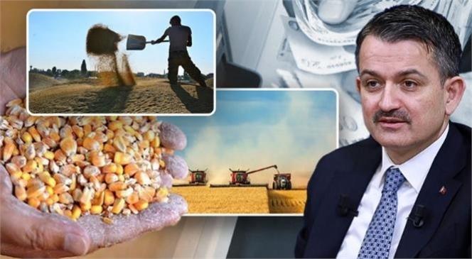Çiftçilere Müjde 395 Milyonluk Destek Bugün Hesaplara Yatıyor