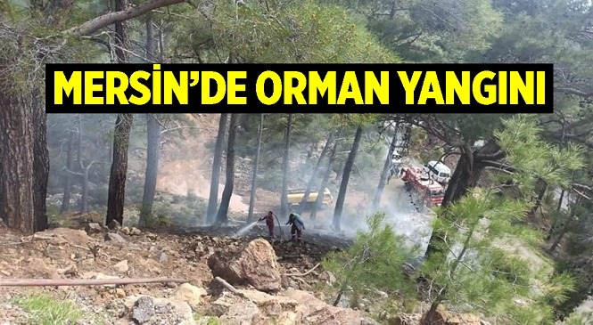 Mersin'de Ormanlık Alanda Başlayan Yangın Orman Bölge Müdürlüğü Ekipleri ve Vatandaşların Çabalarıyla Söndürüldü