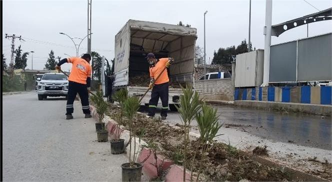 Mersin'de Havaların Isınmasıyla Birlikte Caddelerde Bitki Bakım Çalışmaları Hızlandırıldı