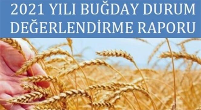 2021 Buğday Beklenti Raporu Borsanın Web Sayfasında Sunuldu