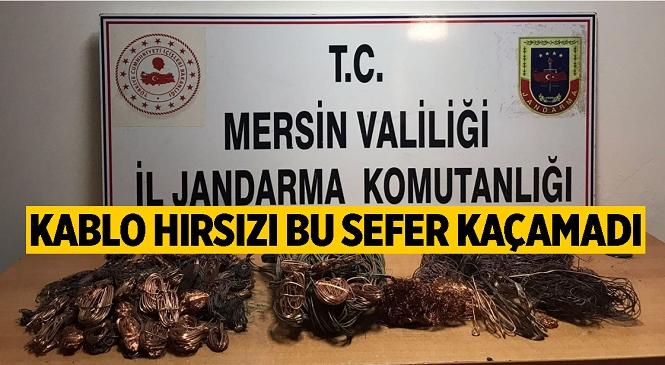 Tarsus ilçesinde Kablo Hırsızlığı Yaptığı Tespit Edilen 1 Kişi yakalandı