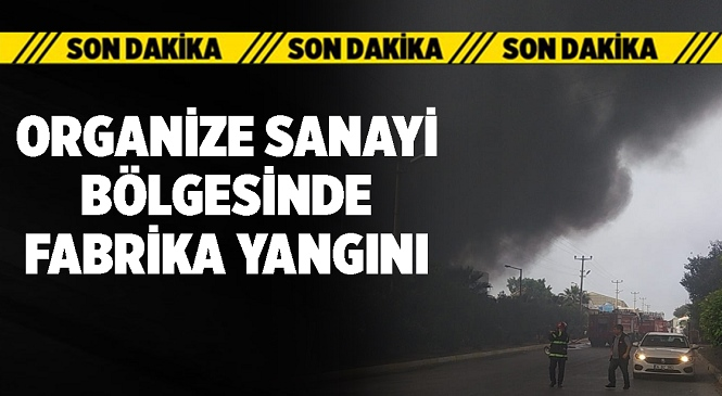 Mersin-Tarsus Organize Sanayi Bölgesinde Bulunan Madeni Yağ Fabrikasında Yangın Çıktı