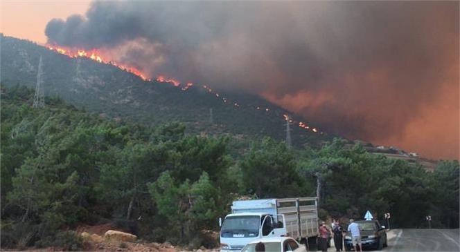 Mersin'in Birçok Bölgesinde Başlayan Orman Yangınları Hala Devam Ediyor…