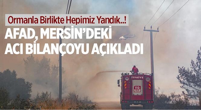 AFAD Mersin'de Devam Eden Orman Yangınındaki Bilançoyu Açıkladı! Yangından Etkilenen Vatandaşların Tedavisi Sürüyor
