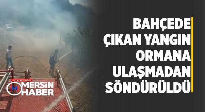 Mersin Tarsus'ta Bahçelik Alanda Çıkan Yangın Ormana Sıçramadan Söndürüldü