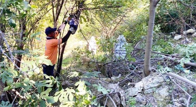 Çamlıyayla Fakılar Mahallesi'ndeki Mezarlık Alanda Büyükşehir'den Kapsamlı Bakım