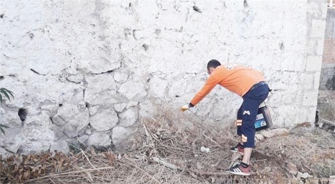 Mersin Tarsus'ta Teksin Üzerinden Gelen 2700'ün Üzerindeki İlaçlama ve Çevre Temizlik Talebi Yerine Getirildi