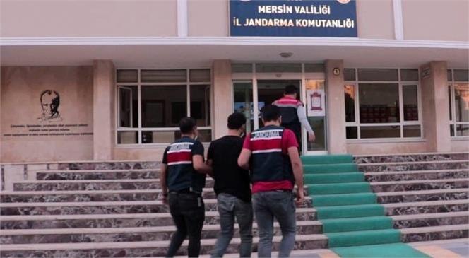 Mersin'de İl Jandarma Komutanlığı Ekipleri PKK/KCK Silahlı Terör Örgütüne Üye Olduğu Tespit Edilen 1 Şahsa Yönelik Operasyon Düzenledi