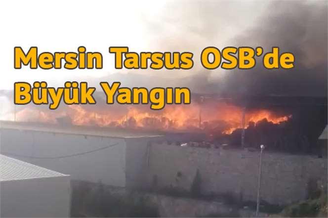 Mersin Tarsus OSB'de Büyük Yangın