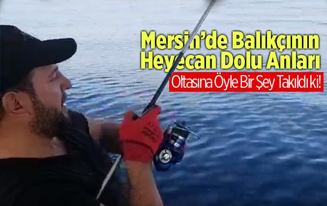 Mersin'de Amatör Balıkçının Oltasına Dev Köpek Balığı Takıldı